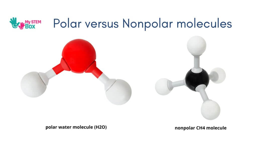 why do oil and water not mix - molecule structure